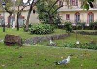 Parque de las Acacias
