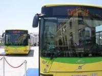 Estación de Autobuses Los Amarillos