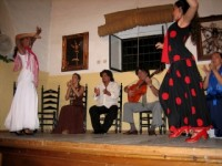 Tablao Flamenco El Lagá del Tío Parrilla