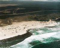 Playa del Hierro