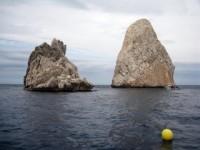 Reserva Marina de las Islas Medas