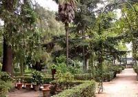 Jard�n Botanico
