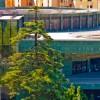 Palacio de Exposiciones y Congresos de Granada (Recinto Ferial)