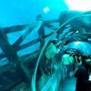 Museo Aquarium Palacio del Mar