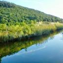 Parque Natural de las Marismas