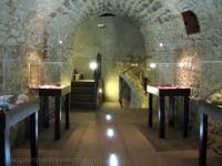 Museo Paleontológico de Lamata
