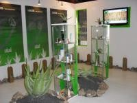 Museo del Aloe Vera