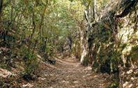 Reserva Natural Especial del Brezal