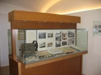 Fundación Sierra Pambley