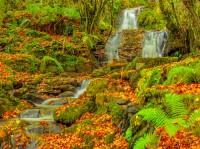 Monumentos Naturales de Folgoso de Courel