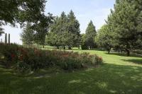 Parque Enrique Tierno Galv�n