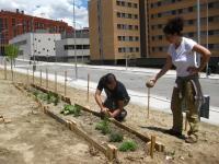 Huerto Urbano Comunitario de Adelfas