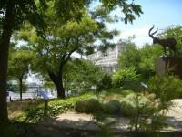 Jardines del Museo Nacional de Ciencias Naturales