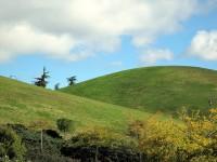 Parque del Cerro del T�o P�o