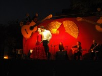 Tablao Flamenco La Alcazaba-Sala Andalucía