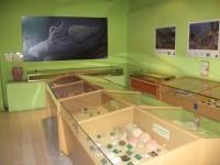 Museo Alboranía Aula del Mar