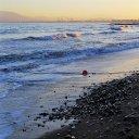 Beach ofl Palo