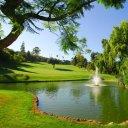 Aloha Golf