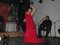 Festival Málaga Flamenca