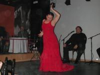 Festival M�laga Flamenca