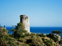 Playa Torre del Pino