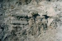 Yacimiento Arqueológico de Castillo Alto