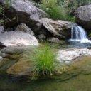 Parque Natural de la Sierra de Las Nieves y el Valle del Guadalhorce