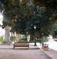 Jardín de Floridablanca