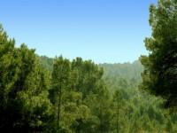 Parque Regional de Carrascoy y El Valle