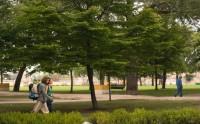 Parque Virgen del Camino