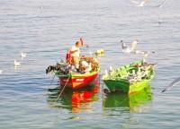 Puerto Deportivo de Cangas de Morrazo