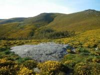 Espacio Protegido de Montes de Lousado, de el Alto das Pozas o O Corrubelo