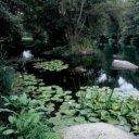 Sitio Natural de Interpretación Nacional Cumbres de la Curotina