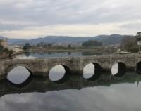 Espacio protegido de las marismas del río Miñor, del Monte Grova y de las Islas Estelas