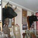 """Museo Taurino """"Primitivo Sanchez Laso"""""""
