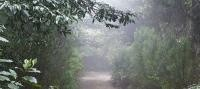 El  Parque Rural de Anaga