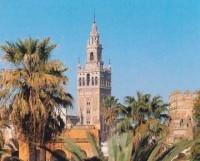 Apit Sevilla