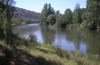 Camping Fuente de la Teja