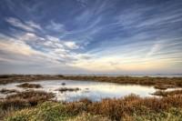Reserva Natural de Fauna Salvaje Llacuna de la Tancada