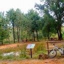 Paraje Natural Protegido de Parpallò Borrell o Paraje Natural Municipal El Surar