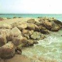 Playa Rafalcaid