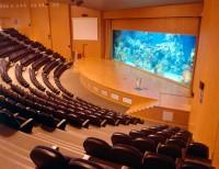Auditorio - Mar Rojo