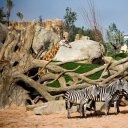 Zoo de Valencia