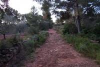 Paraje Natural Protegido de Les Rodanes