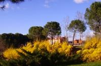 Parque de Canterac