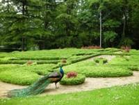 Parque de la Fuente de la Salud