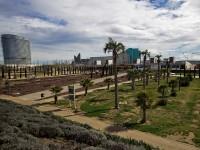 Park of Agua Luis Buñuel