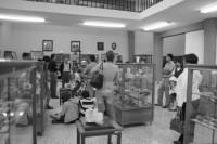 Museo de la Mineralogía (Facultad de Minas)