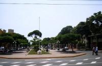 Alameda Saenz Peña