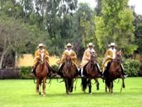 Concurso Nacional de Caballo Peruano de Paso